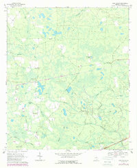 Download a high-resolution, GPS-compatible USGS topo map for Pine Valley, GA (1988 edition)