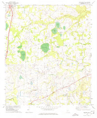 Download a high-resolution, GPS-compatible USGS topo map for Pineview NW, GA (1974 edition)