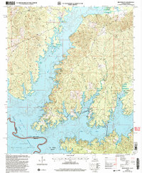 Download a high-resolution, GPS-compatible USGS topo map for Beech Bayou, LA (2004 edition)