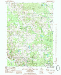 Download a high-resolution, GPS-compatible USGS topo map for Walkerville West, MI (1985 edition)