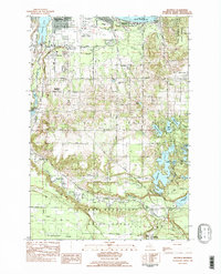 Download a high-resolution, GPS-compatible USGS topo map for Mayfield, MI (1984 edition)