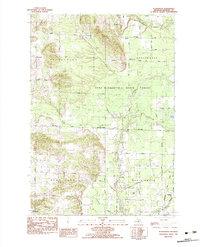 Download a high-resolution, GPS-compatible USGS topo map for Pleasanton, MI (1983 edition)