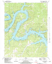 Download a high-resolution, GPS-compatible USGS topo map for Bollinger Creek, MO (1983 edition)