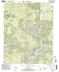 Download a high-resolution, GPS-compatible USGS topo map for Bradleyville, MO (2006 edition)