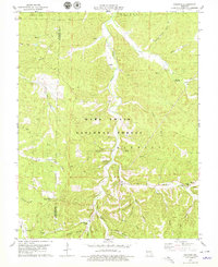 Download a high-resolution, GPS-compatible USGS topo map for Courtois, MO (1979 edition)