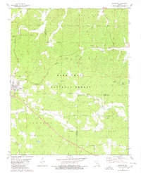 Download a high-resolution, GPS-compatible USGS topo map for Ellsinore, MO (1980 edition)