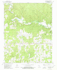 Download a high-resolution, GPS-compatible USGS topo map for Flatwoods, MO (1980 edition)