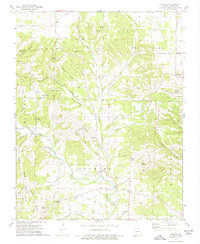 Download a high-resolution, GPS-compatible USGS topo map for Jenkins, MO (1977 edition)