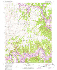 Download a high-resolution, GPS-compatible USGS topo map for Leesville, MO (1982 edition)
