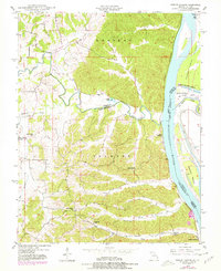 Download a high-resolution, GPS-compatible USGS topo map for Neelys Landing, MO (1978 edition)