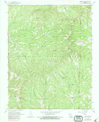 Download a high-resolution, GPS-compatible USGS topo map for Protem NE, MO (1983 edition)