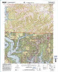 Download a high-resolution, GPS-compatible USGS topo map for Reeds Spring, MO (2002 edition)