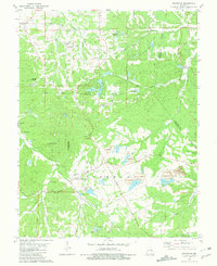 Download a high-resolution, GPS-compatible USGS topo map for Richwoods, MO (1981 edition)
