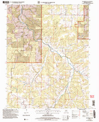 Download a high-resolution, GPS-compatible USGS topo map for Roubidoux, MO (2006 edition)