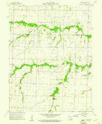 Download a high-resolution, GPS-compatible USGS topo map for Rowena, MO (1961 edition)