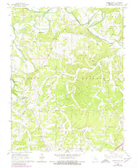 Download a high-resolution, GPS-compatible USGS topo map for Spring Bluff, MO (1980 edition)
