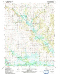 Download a high-resolution, GPS-compatible USGS topo map for Taberville, MO (1992 edition)