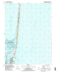Download a high-resolution, GPS-compatible USGS topo map for Barnegat Light, NJ (1989 edition)