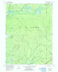 Download a high-resolution, GPS-compatible USGS topo map for Oswego Lake, NJ (1992 edition)
