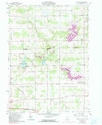 Download a high-resolution, GPS-compatible USGS topo map for Nettle Lake, OH (1991 edition)