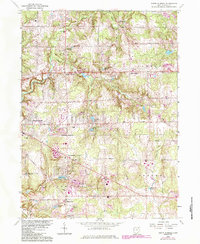 Download a high-resolution, GPS-compatible USGS topo map for South Russell, OH (1984 edition)
