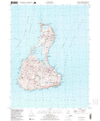 Download a high-resolution, GPS-compatible USGS topo map for Block Island, RI (1999 edition)
