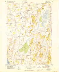 Download a high-resolution, GPS-compatible USGS topo map for Bridport, VT (1950 edition)