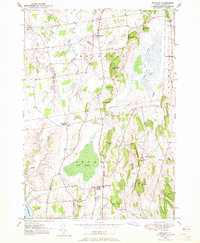 Download a high-resolution, GPS-compatible USGS topo map for Bridport, VT (1965 edition)