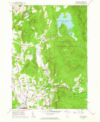 Download a high-resolution, GPS-compatible USGS topo map for Chittenden, VT (1964 edition)