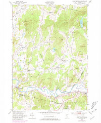 Download a high-resolution, GPS-compatible USGS topo map for Gilson Mountain, VT (1981 edition)