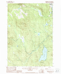 Download a high-resolution, GPS-compatible USGS topo map for Maidstone Lake, VT (1988 edition)