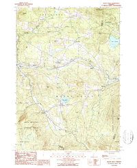 Download a high-resolution, GPS-compatible USGS topo map for Mount Holly, VT (1987 edition)
