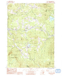 Download a high-resolution, GPS-compatible USGS topo map for Mount Holly, VT (1991 edition)
