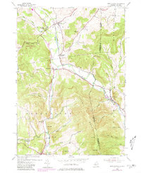 Download a high-resolution, GPS-compatible USGS topo map for North Pownal, VT (1980 edition)