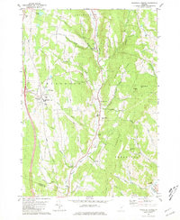 Download a high-resolution, GPS-compatible USGS topo map for Randolph Center, VT (1981 edition)
