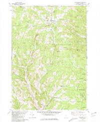 Download a high-resolution, GPS-compatible USGS topo map for Washington, VT (1981 edition)