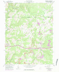 Download a high-resolution, GPS-compatible USGS topo map for Brandonville, WV (1984 edition)