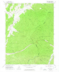 Download a high-resolution, GPS-compatible USGS topo map for Paddy Knob, WV (1974 edition)