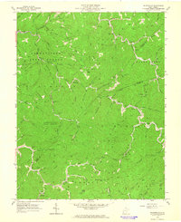 Download a high-resolution, GPS-compatible USGS topo map for Wilsondale, WV (1964 edition)
