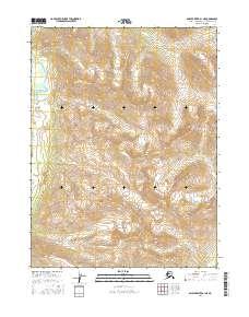 Topo map Ambler River A-1 NE Alaska