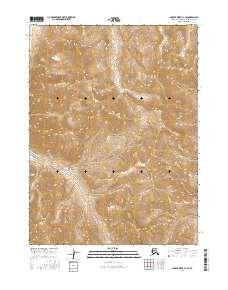 Topo map Ambler River C-1 SE Alaska