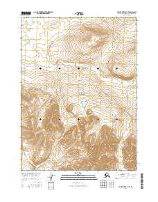 Topo map Ambler River D-3 SE Alaska