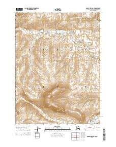 Topo map Ambler River D-6 SE Alaska