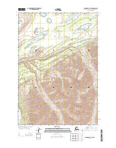Topo map Anchorage D-1 SW Alaska
