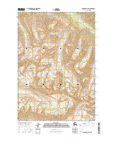 Topo map Anchorage D-7 NE Alaska