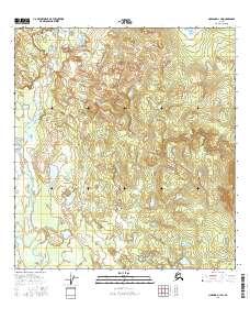 Topo map Nabesna D-1 SW Alaska