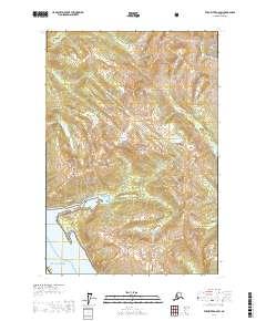 Topo map Taku River A-6 SW Alaska