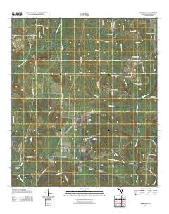 Map Of Spring Hill Florida.Usgs Us Topo 7 5 Minute Map For Spring Hill Fl 2012 Sciencebase